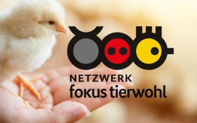 Netzwerk Fokus Tierwohl